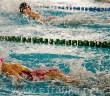 plivanje gob bl