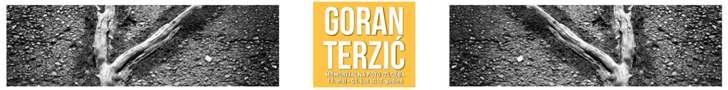 Goran Terzić