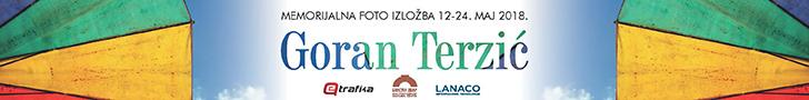 Goran Terzić izložba